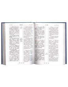 Святое Евангелие с параллельным переводом, на церковнославянском и русском языках